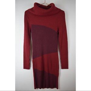 🦋VENUS🦋 Burgundy Sweater Dress - Fitted